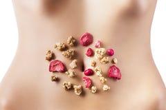 Composição dos cereais e de frutas secadas vermelhas Imagens de Stock Royalty Free