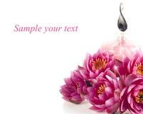 Composição dos termas com petróleo da fragrância e lírio de água Imagens de Stock Royalty Free