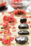 Composição dos termas das pedras a Imagens de Stock