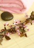 Composição dos termas das pedras e de flores cor-de-rosa Imagens de Stock Royalty Free