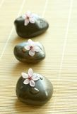 Composição dos termas das pedras e de flores cor-de-rosa Fotografia de Stock Royalty Free
