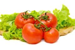 Composição dos vegetais com os tomates isolados em a fotos de stock