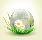 Composição elegante do tema da terra Imagem de Stock