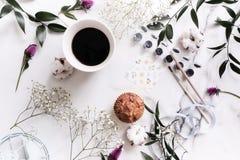 Composição elegante: flores macias, folhas, algodão, pinturas, watercolour, escovas foto de stock royalty free