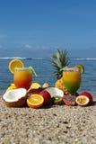 Composição exótica das frutas Fotos de Stock Royalty Free