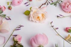 Composição festiva da flor no fundo de madeira branco Vista aérea Foto de Stock