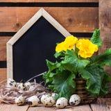 Composição festiva da Páscoa com flores e ovos de codorniz Imagem de Stock Royalty Free