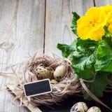 Composição festiva da Páscoa com flores e ovos de codorniz Fotografia de Stock Royalty Free