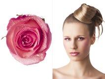 A composição floral, é girada de três - quartos - olhos aberta Fotos de Stock