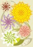 Composição floral ilustração do vetor