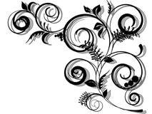 Composição floral abstrata Imagens de Stock