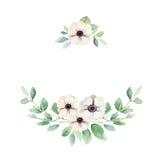 Composição floral com anêmonas e folhas ilustração do vetor
