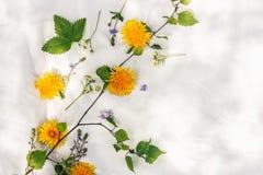 Composição floral feita das folhas e das flores no fundo do tecido fotografia de stock