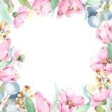 Composição floral quadrada da aquarela com flores de florescência, verdes e eucalipto ilustração royalty free