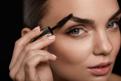 Composição perfeita para a mulher bonita Cuidado da testa para as sobrancelhas fotos de stock royalty free