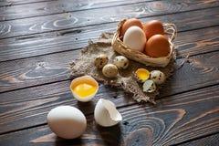Composição rural dos ovos sortidos Fotos de Stock Royalty Free