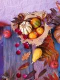 Composição sazonal decorativa das folhas de outono brilhantes, das abóboras, das maçãs e das pétalas cor-de-rosa em uma tabela de foto de stock