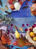 Composição sazonal decorativa das folhas de outono brilhantes, das abóboras, das maçãs e das pétalas cor-de-rosa em uma tabela de fotografia de stock