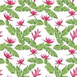 Composição sem emenda das folhas verdes e do fundo branco das flores vermelhas ilustração stock