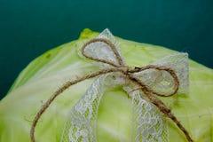 Composição vegetal, ainda vida dos tomates vermelhos, folhas da couve verde fresca Fotografia de Stock