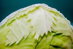 Composição vegetal, ainda vida dos tomates vermelhos, folhas da couve verde fresca Fotos de Stock