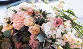 Composições à moda da flor das flores frescas Foto de Stock Royalty Free