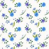 Composições da aquarela das flores selvagens Teste padrão sem emenda ilustração stock