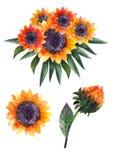 Composições da aquarela do outono ou ramalhetes dos girassóis ilustração royalty free