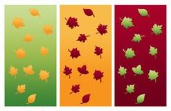 Composições das folhas de outono Foto de Stock Royalty Free
