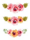 Composições do fundo da aquarela da flor ilustração stock