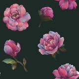 A composi??o das flores da pe?nia Teste padr?o sem emenda da aquarela das flores Teste padr?o bot?nico Pe?nias da aquarela ilustração do vetor