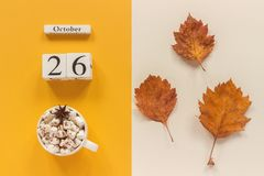 Composi??o do outono Calend?rio o 26 de outubro de madeira, copo do cacau com marshmallows e folhas de outono amarelas no fundo b fotografia de stock