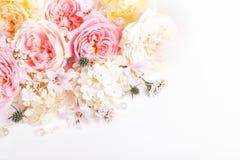 Composi??o festiva da flor no fundo branco Vista a?rea foto de stock royalty free