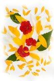 Composición abstracta con las flores Imagenes de archivo