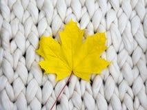 Composición acogedora, hoja del otoño en la atmósfera merina de la manta de las lanas, caliente y cómoda Haga punto el fondo Ende foto de archivo