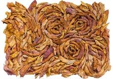 Composición artística de la hoja colorida del otoño Fotografía de archivo libre de regalías