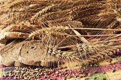 Composición atractiva de los productos y de los gérmenes del trigo Fotos de archivo