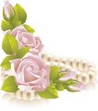 Composición color de rosa del color de rosa Fotografía de archivo libre de regalías