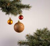 Composición con bolas de la decoración del árbol de navidad y de la Navidad, Fotos de archivo