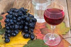 Composición con el vidrio de vino rojo y de uvas en el primer de madera de la tabla Foto de archivo libre de regalías