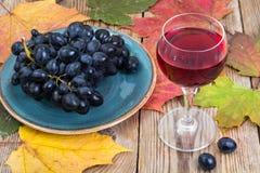 Composición con el vidrio de vino rojo y de uvas en el primer de madera de la tabla Imagenes de archivo
