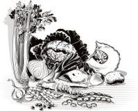 Composición con la cebolla, col, apio, patatas, puerros, pumpki ilustración del vector