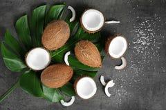 Composición con la hoja verde y los cocos frescos fotografía de archivo