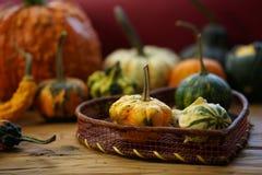 Composición con las calabazas de Halloween fotos de archivo