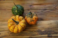 Composición con las calabazas de Halloween foto de archivo libre de regalías