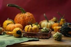 Composición con las calabazas de Halloween imagen de archivo libre de regalías