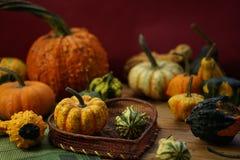 Composición con las calabazas de Halloween imagenes de archivo