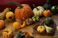 Composición con las calabazas de Halloween imágenes de archivo libres de regalías