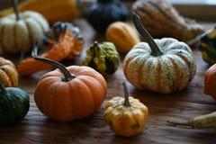 Composición con las calabazas de Halloween imagen de archivo
