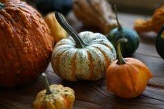 Composición con las calabazas de Halloween fotografía de archivo